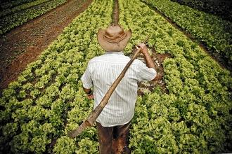 agricultor fam