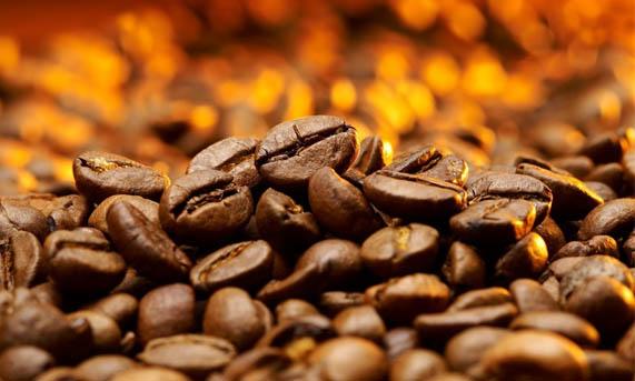 cafe - boa
