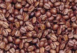 cafe04 cópia