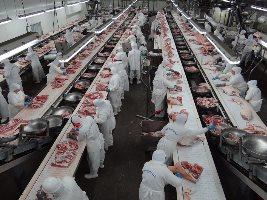 carne exportacao