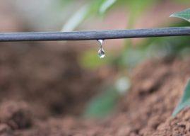 Rio Bananal vai sediar dia de campo sobre sistemas de irrigação