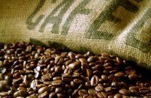 cafe saca