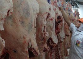 Brasil exportará carne bovina e miúdos para Tailândia