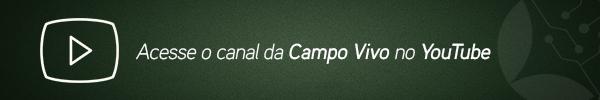 institucional-canal-youtube-ok